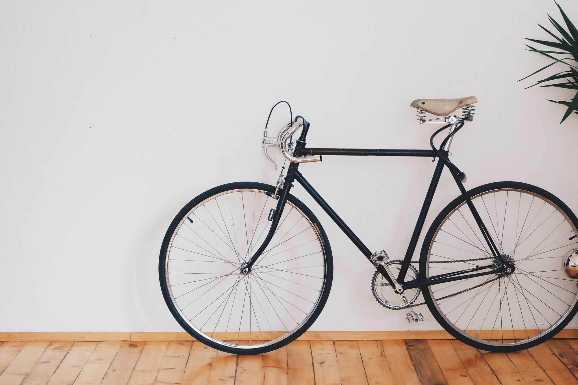 activity-bicycle-bike-biker-276517
