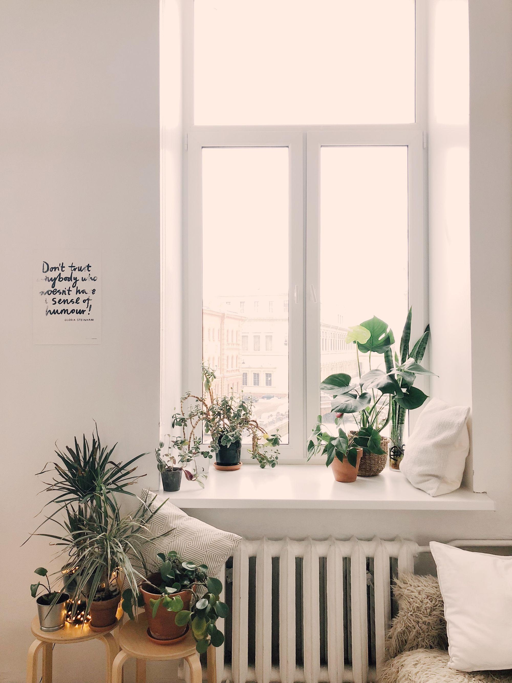 Home-Urban-Jungle