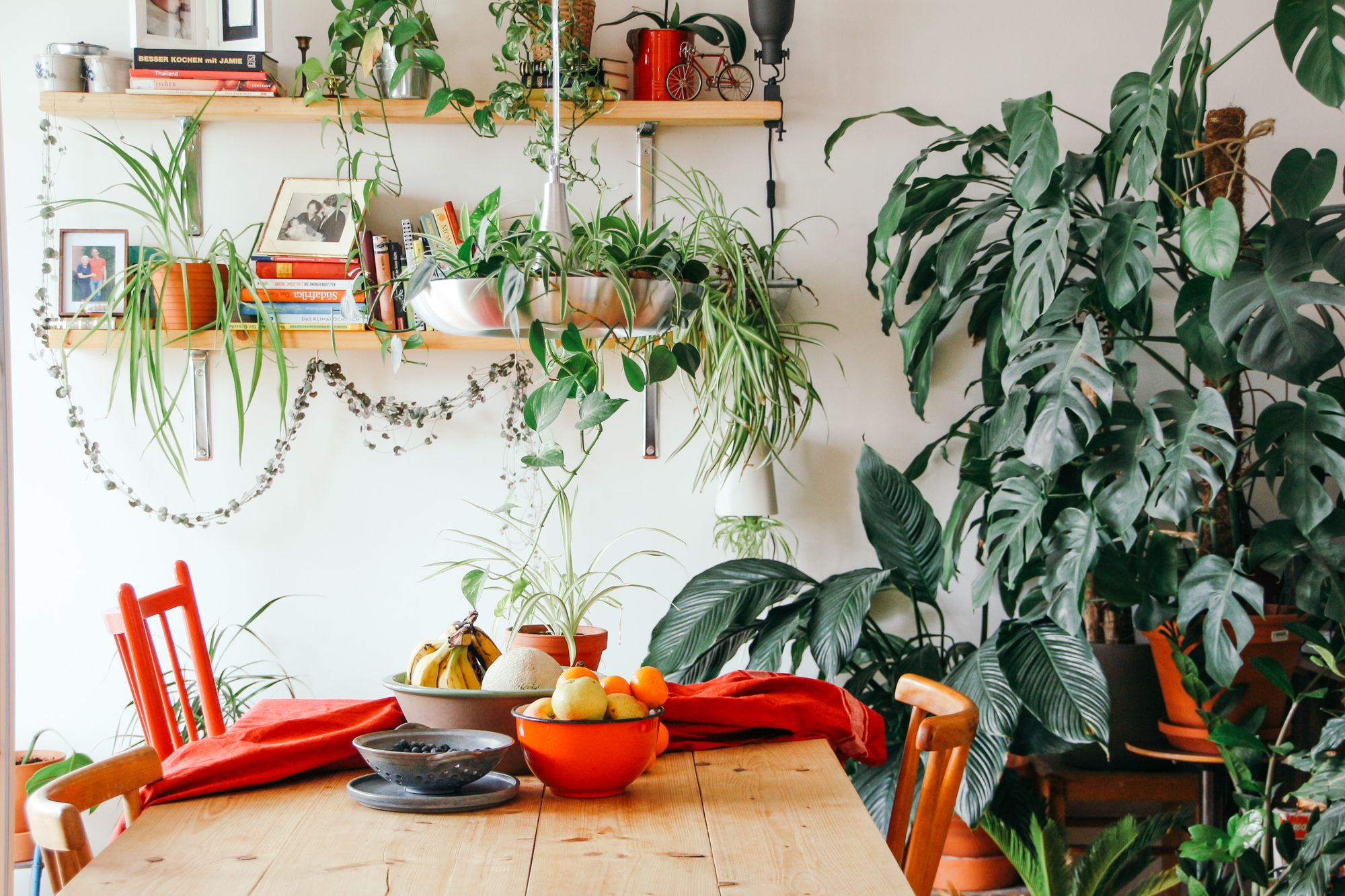 10 tips to make your rental flat feel like home